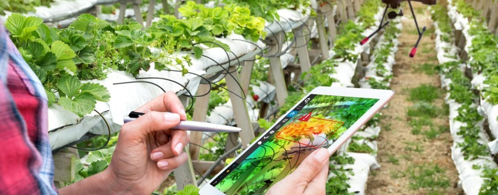 Precision farming as a global trend