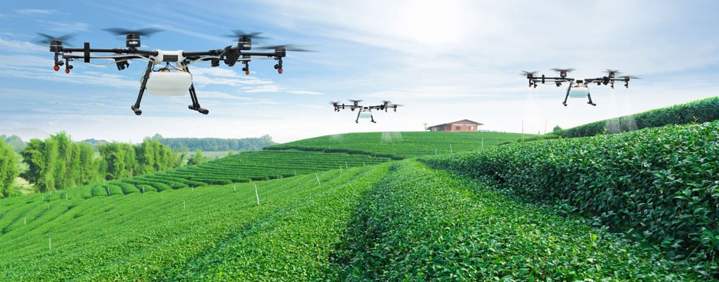 Farmers increase the use of drones